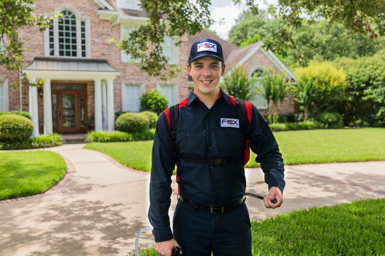 8 Tips to Find the Best Pest Control for You