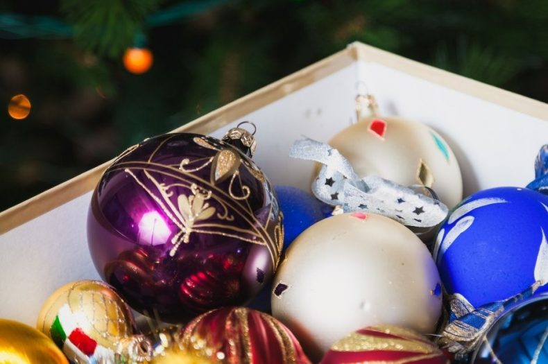 Holiday Decor Storage Tips to Keep Rodents Out