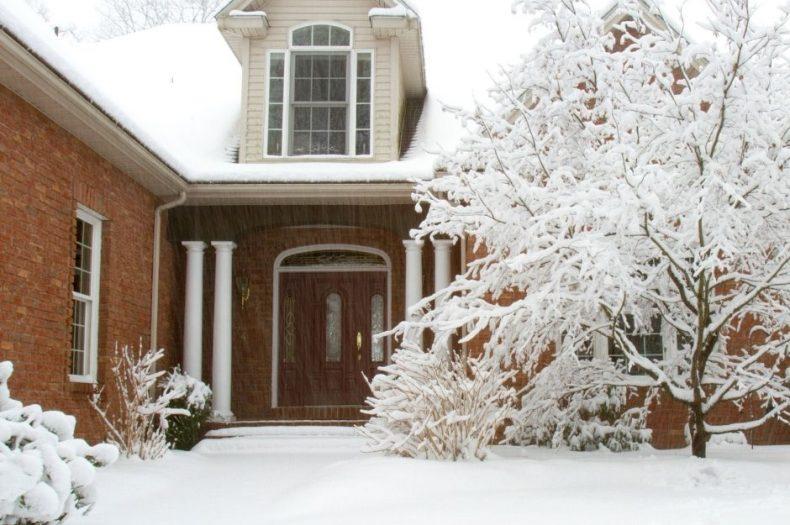 Fox's Winter Pest-Proofing Checklist