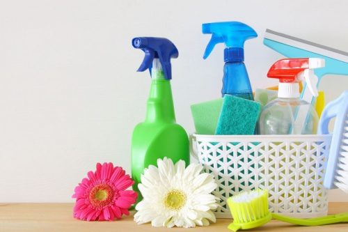 Spring Cleaning Checklist For A Pest Free Home